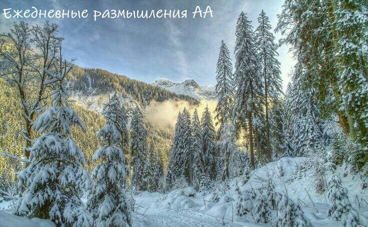 лес горы деревья зима ежедневные медитации аа
