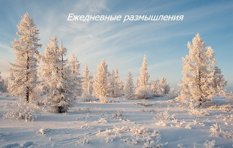 деревья, зима ежедневные медитации молитвы аа